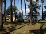 Zelte im Wald - mit Blick auf den Teich